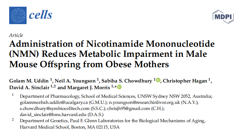 家长注意!父母胖孩子易患代谢障碍,增强代谢NMN有助减肥